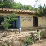 Ayapate